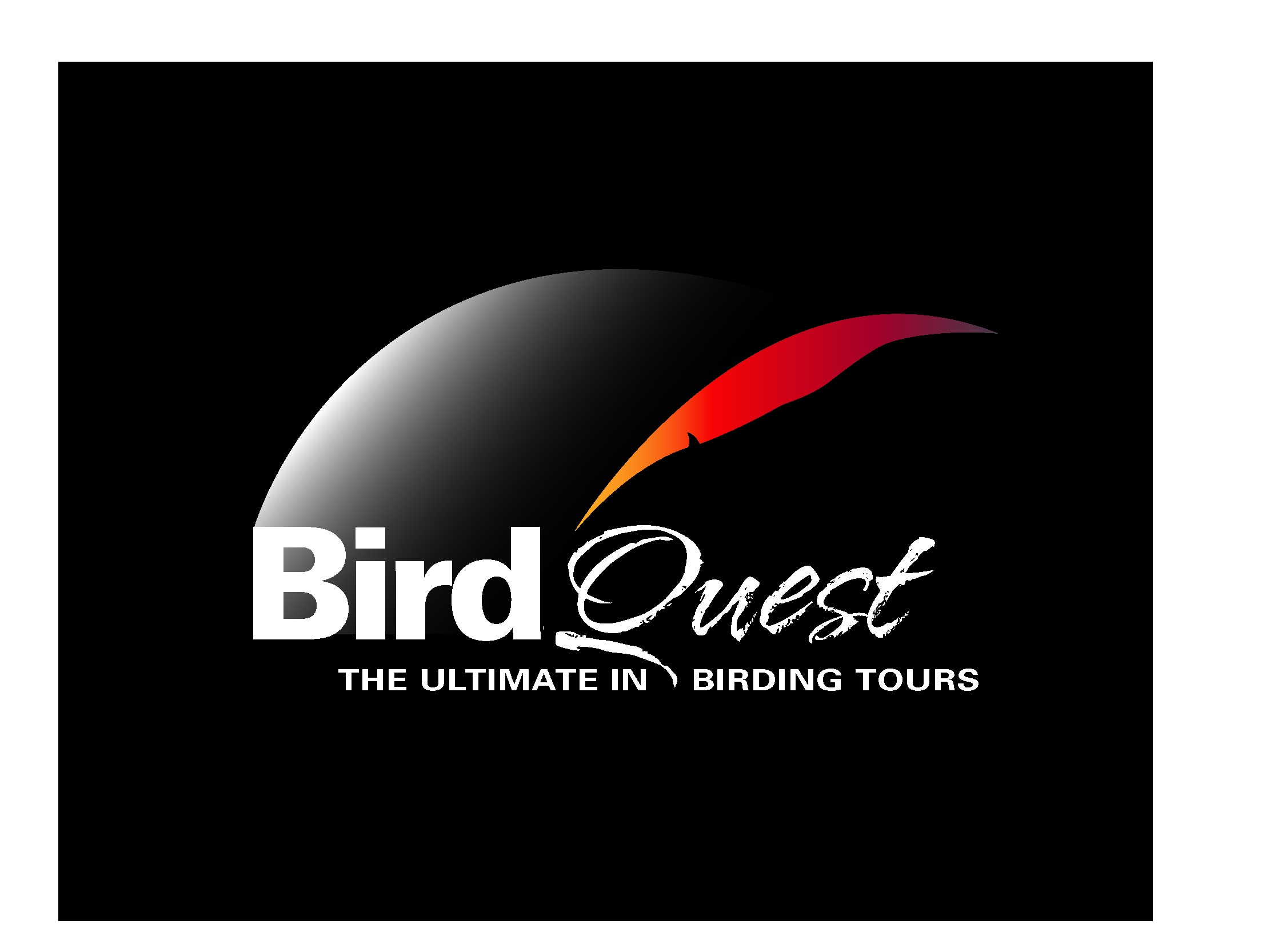 birdquest_logo