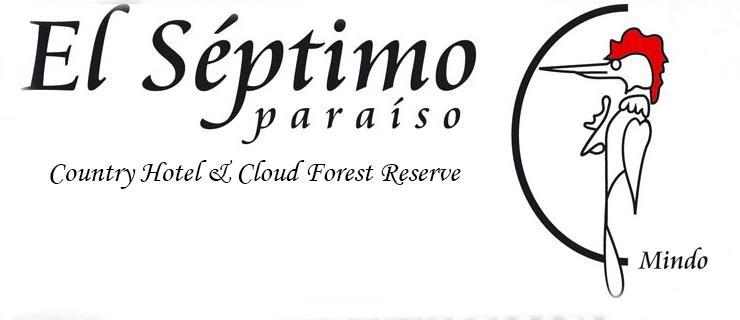 EL_Septimo_logo